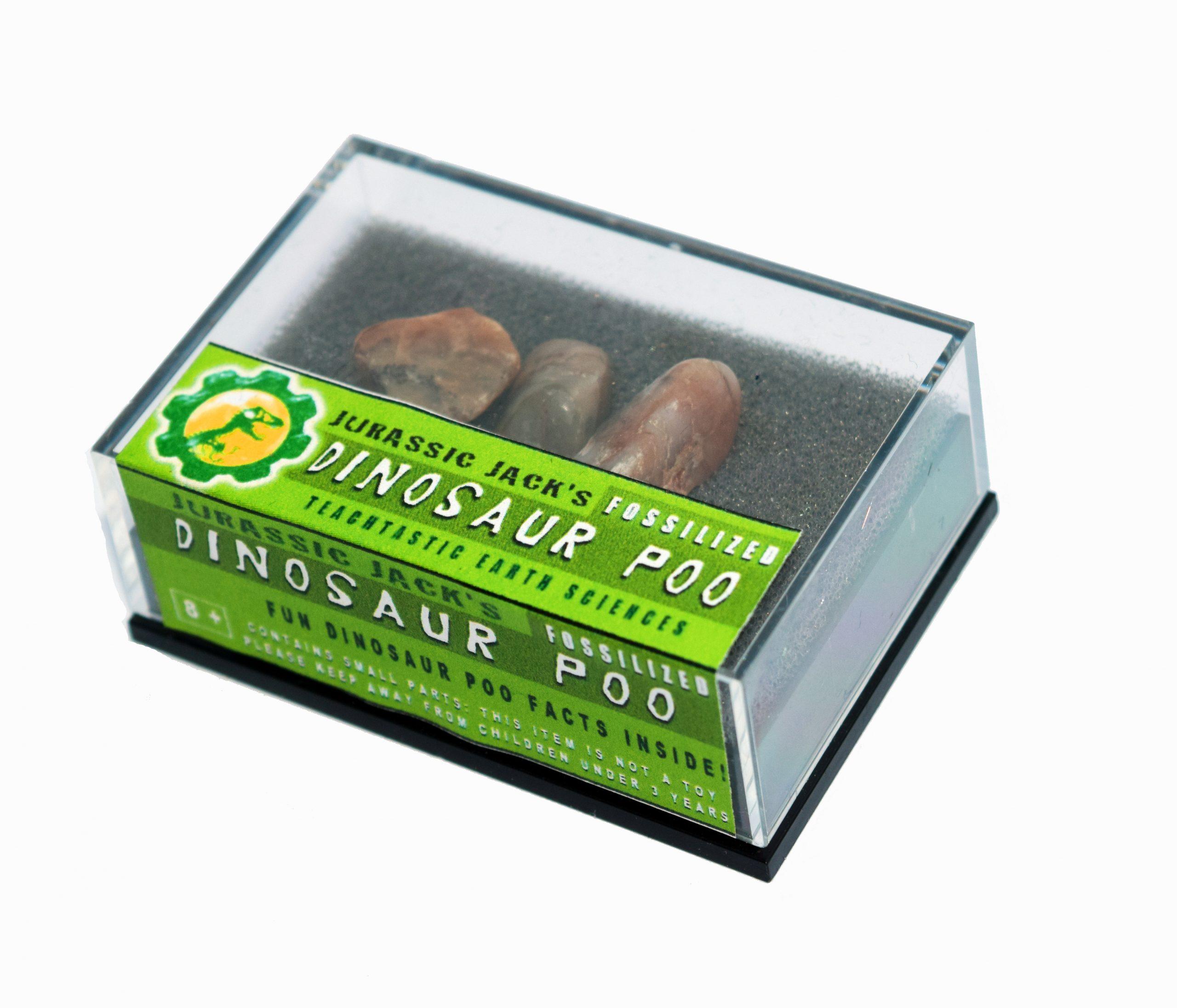jurassic jacks dinosaur poo box collection