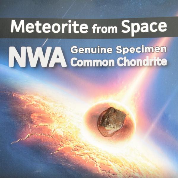 real_meteorite