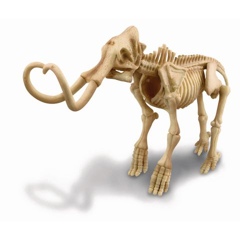 Wooly Mammoth Excavation Set _1